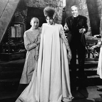 me_ann_david_bride_of_frankenstein