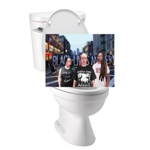me_ann_david_toilet